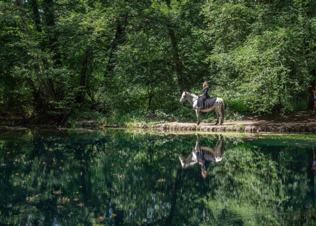 La source du Planey, site sublime dans les Vosges du Sud