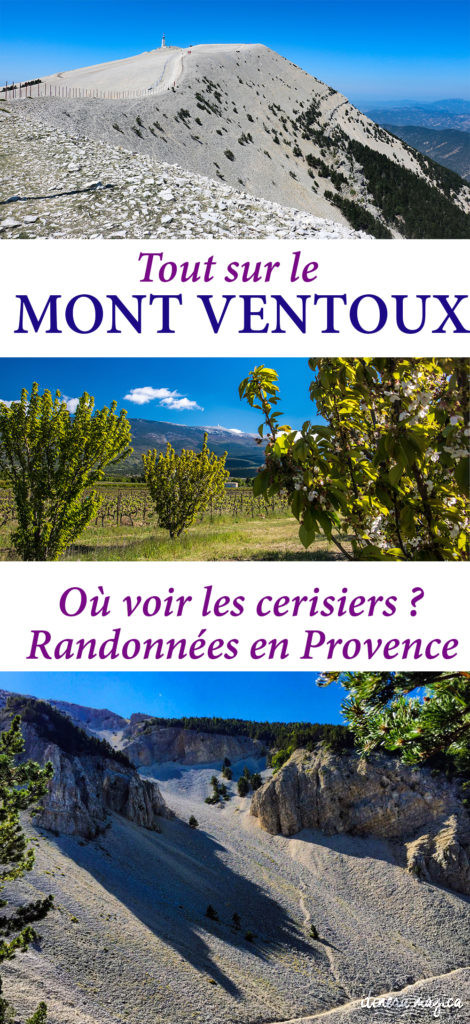 Tout sur le Mont Ventoux en Provence : où voir les cerisiers du Ventoux ? Les plus belles randonnées ? Que faire dans la région du Ventoux et de Carpentras ?