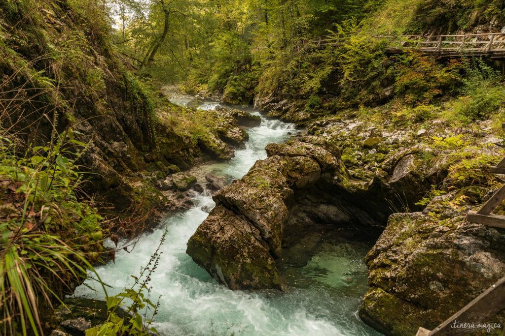 Voyage en Slovénie : Bled, Bohinj, Vintgar, Velika Planina, Ljubljana. Un road trip en Slovénie pour un long week-end